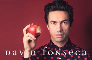 Concierto David Fonseca